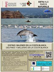 Medio Ambiente_cartel charla cetáceos en parque natural