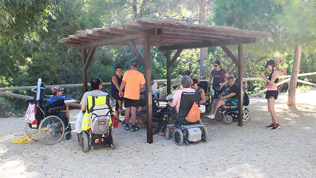 PN accesible