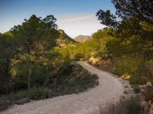 Sendero de la ruta del Cantal