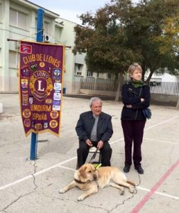 perros guias 002